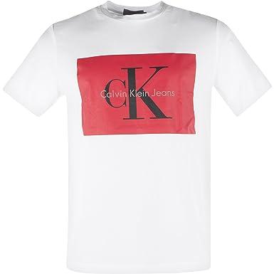 quality design cd261 e35f3 Calvin Klein Jeans J30J307427 TIKIMO 2 T-Shirt Men