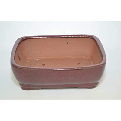 "Bonsai Ceramic Pot 8"", Burgundy Color, Glazed with draining Holes.: Arts, Crafts & Sewing"