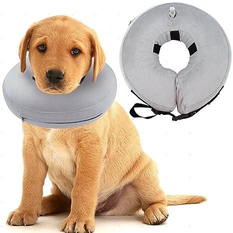 SCENEREAL CO.? Collar hinchable para perro: Amazon.es: Productos ...