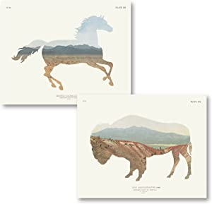 Gango Home Decor Contemporary American Southwest Horse & Buffalo by Wild Apple Portfolio (Printed on Paper); Two 20x16in Fine Art Paper Giclee Prints