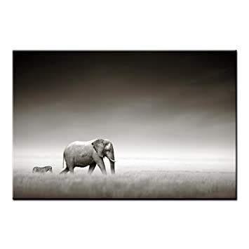 Amazon.com: Framed Photo Canvas Art Prints Elephant and Zebra Wall ...