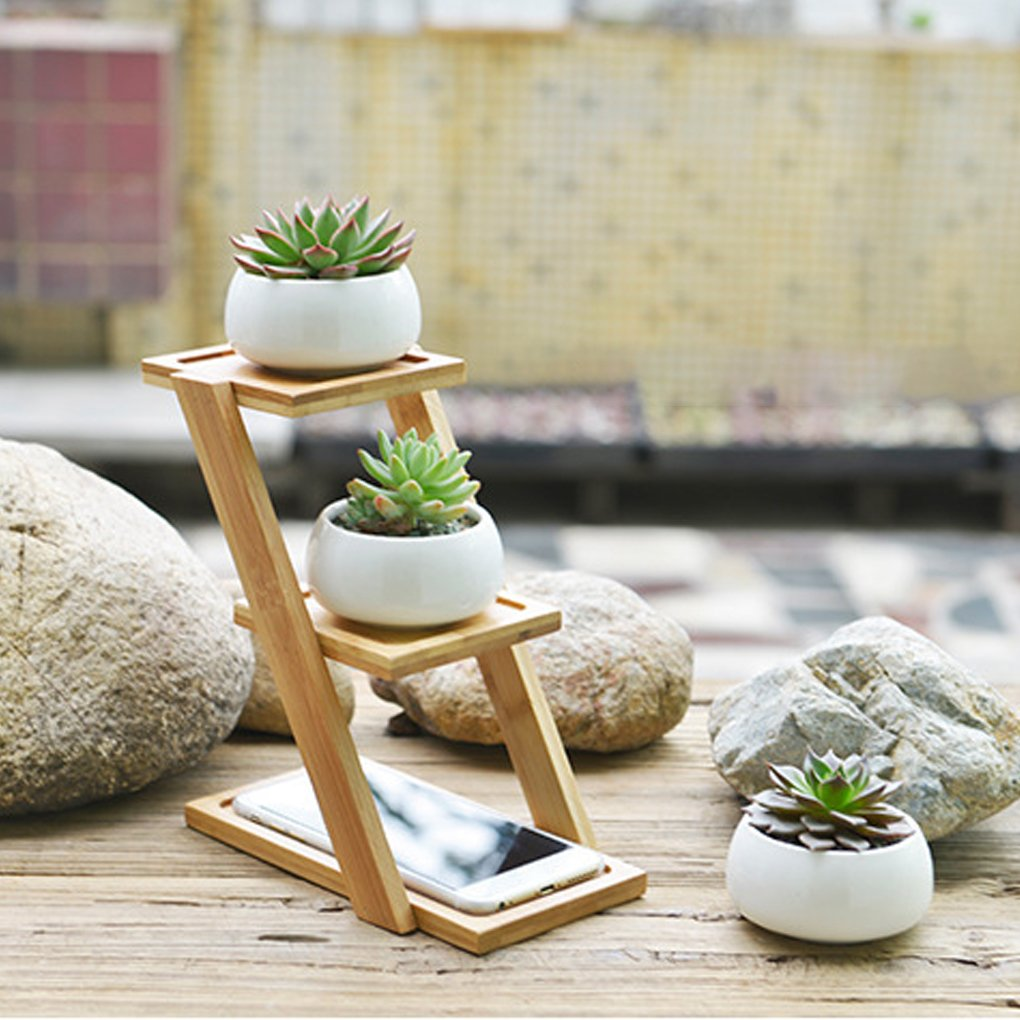 MuLuo Small Round White Ceramic Succulent Plant Pot Cactus Planter for Succulent Plants with Bamboo Tray for Room Decoration by MuLuo (Image #3)