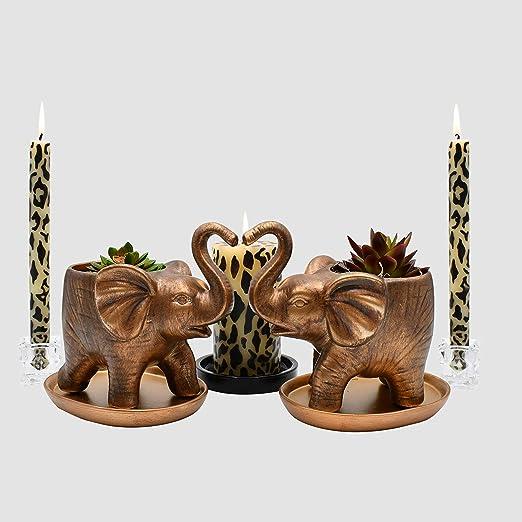 Anniversary Special Occasion gift ideas Protection Home Decor Good fortune 2 Elephant Planters Unique Plant Pots