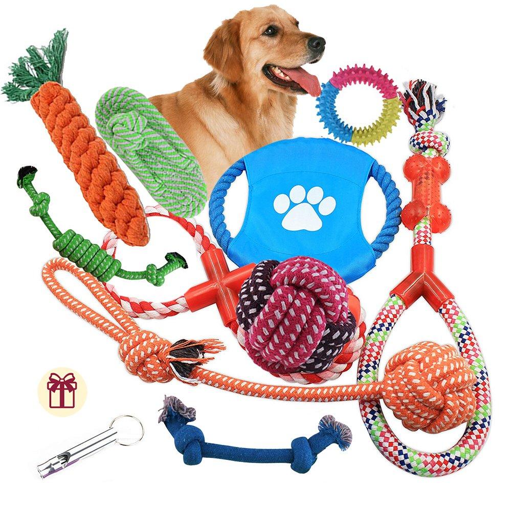 Adoriey Cane corda giocattoli 10 pezzi Set Pet Puppy Chew Toy assortimento per cani taglia piccola e media