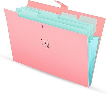 Carpeta de documentos Pocket A4 Organizador, Expansión de archivos con 5 compartimentos Organizer impermeable (cubierta rosada): Amazon.es: Oficina y papelería