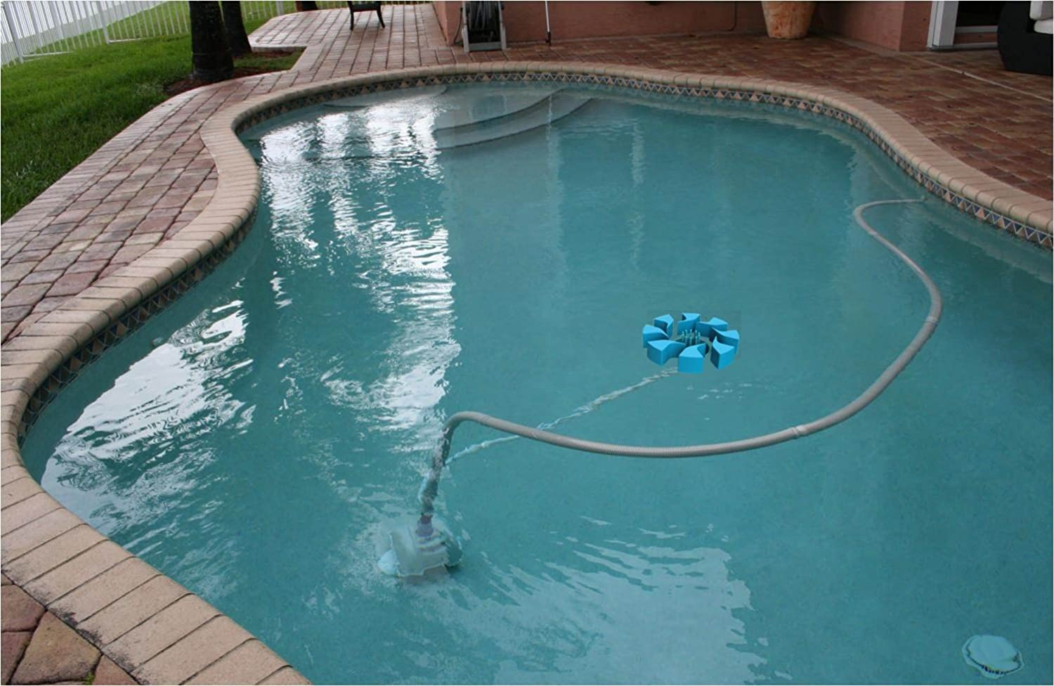 Floating Pool Skimmer Images Galleries With A Bite