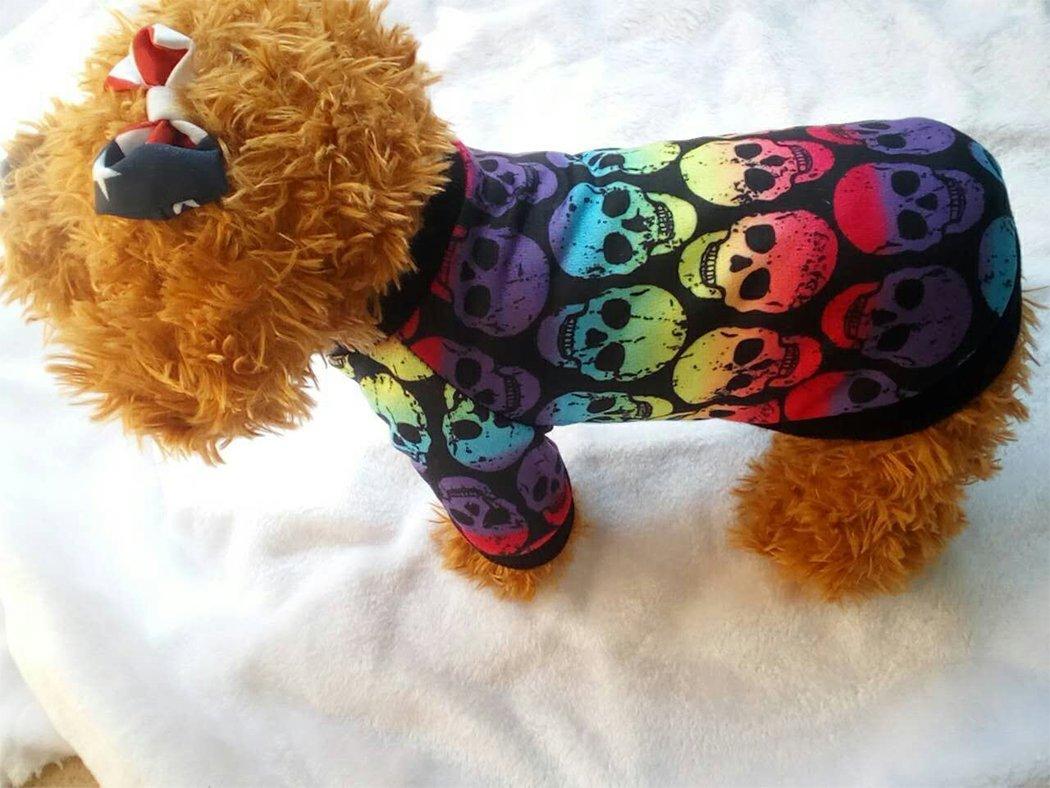 Hillento Halloween gato peque/ño perro ropa para mascotas fantasma cr/áneo con alas chaleco camiseta Ropa de Halloween ropa del perrito