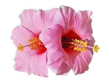 Amazoncom Double Hawaiian Hibiscus Flower Hair Clip Pink Beauty