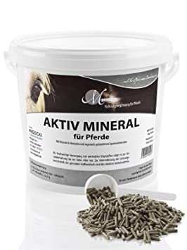 M de Premium activo Mineral - 4 KG - Forro para caballos - Mineral con zinc, selenio, manganeso - Pellets: Amazon.es: Productos para mascotas