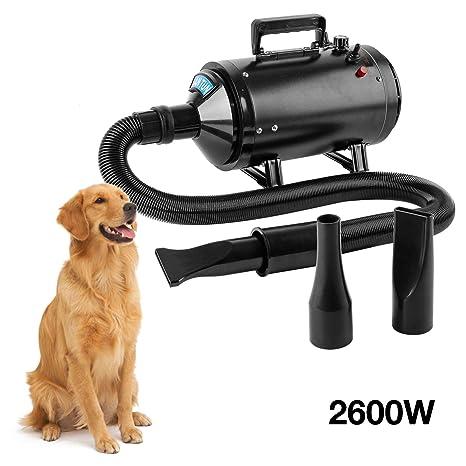 BAODE - Secador de Pelo para Perros, secador de Mascotas, secador de Pelo para