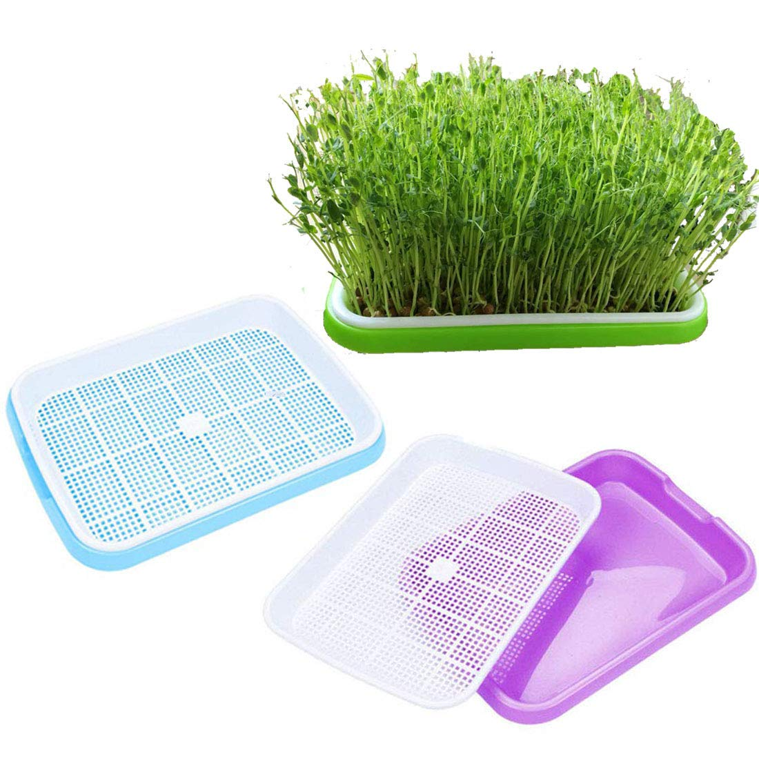 3 Pack Seed Sprouter Tray, Seed Germination Tray BPA Free Nursery Tray for Seedling Planting Garden Wheat Hydroponics by OYSIR