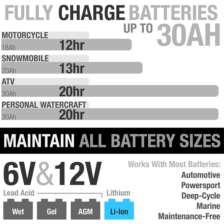 NOCO G26000EU 12V//24V 26 Amp Intelligente Caricabatteria e Mantenitore di Carica automatico per Auto Moto e Altro