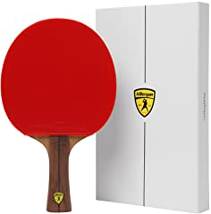Best ping pong paddle for spins according to 30 review portals