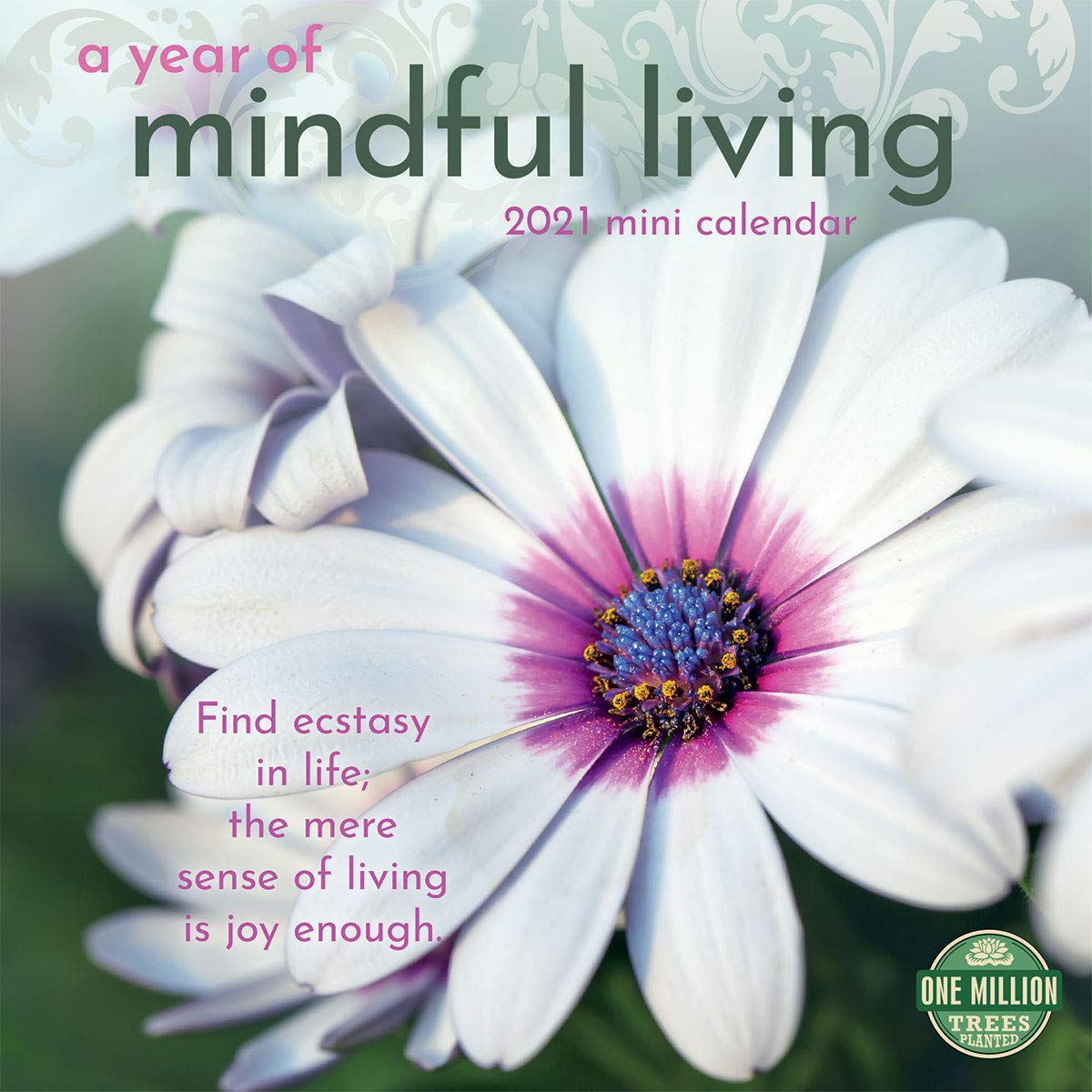 Calendrier Pollen 2021 2021 A Year of Mindful Living Mini Calendar: Amber Lotus