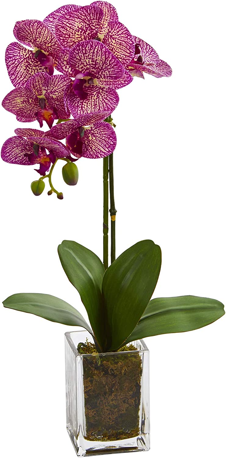 Nearly Natural 24-in. Orchid Phalaenopsis Artificial Vase Silk Arrangements, Pink