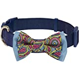 Blueberry Pet Retro Paisley-Druck Inspiriertes Ultimatives Neopren-Gepolstertes Hundehalsband