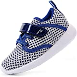 EIGHT KM Boys and Girls Toddler Kids EKM7027 Lightweight Breathable Sparkly Fabric Trainers School Shoes