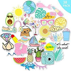 Laptop Stickers - Pack of 38, Vinyl VSCO Stickers for Water Bottles Waterproof and Sun Protection, HD Non-Duplicate Graffiti Decals Cute Stickers for Girls and Teen