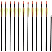 Anladia 12-delige glasvezelpijl voor boogschieten, pijl 28/30/32 inch boogpijlen pijlen van glasvezel