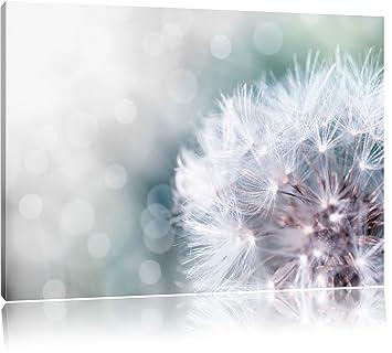 Zauberhafte Pusteblume Schwarz/Weiß, Format: 120x80 auf Leinwand ...