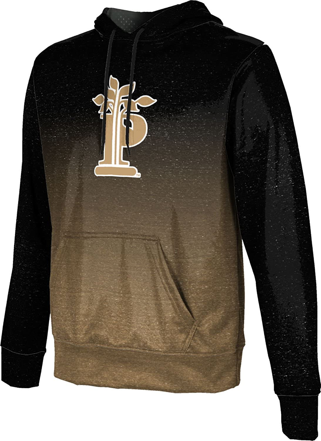 ProSphere Pierpont Community /& Technical College Boys Pullover Hoodie Gameday