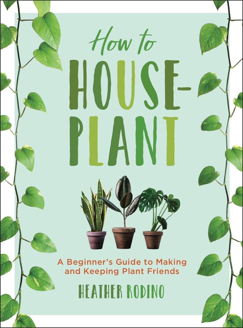 How To Houseplant  A Beginner's Guide To Making And Keeping Plant Friends