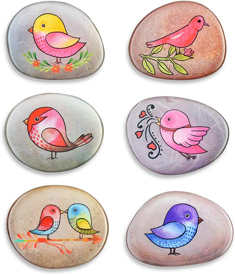 Bird Magnets for Fridge 6PCS Cute Decorative Refrigerator Magnets Funny Decoration Kitchen Office Whiteboards etc Suitable for Kids Toddlers and Adults (Bird Magnets)