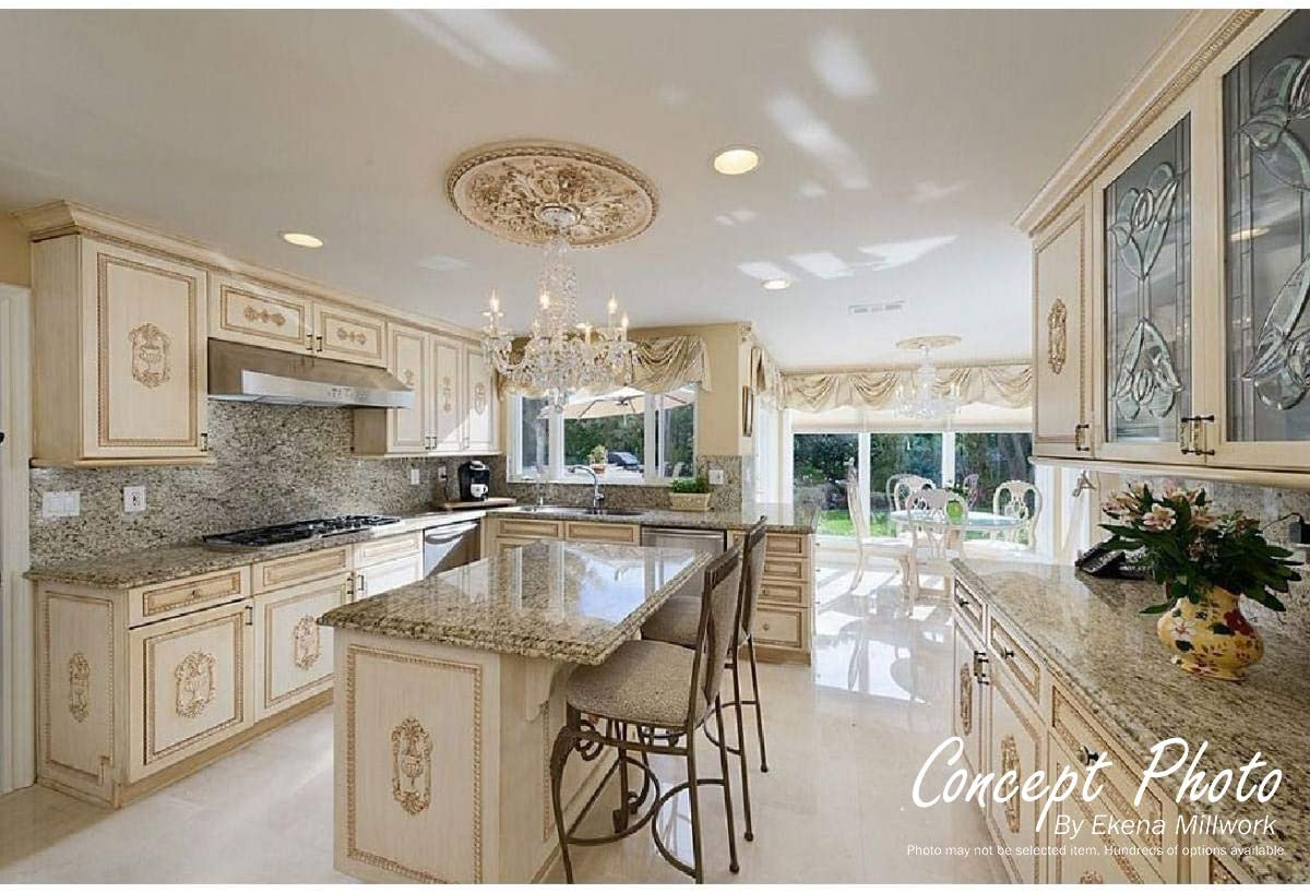 17 7//8OD x 3 7//8ID x 1P Ekena Millwork CM17TSPWS Terrones Butterfly Ceiling Medallion Hand-Painted Pearl White Fits Canopies up to 3 7//8