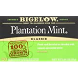 Bigelow Plantation Mint Tea, 20-Count Boxes (Pack of 6) (Packaging May Vary)