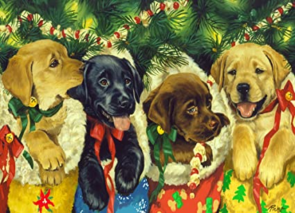Christmas Puppies.Amazon Com Christmas Puppies Jigsaw Puzzle 1000 Piece Toys