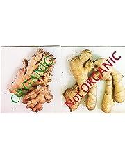 Ginger Root, Fresh, Whole, NON GMO, Organic, 10 Ounces, Simply Delicious