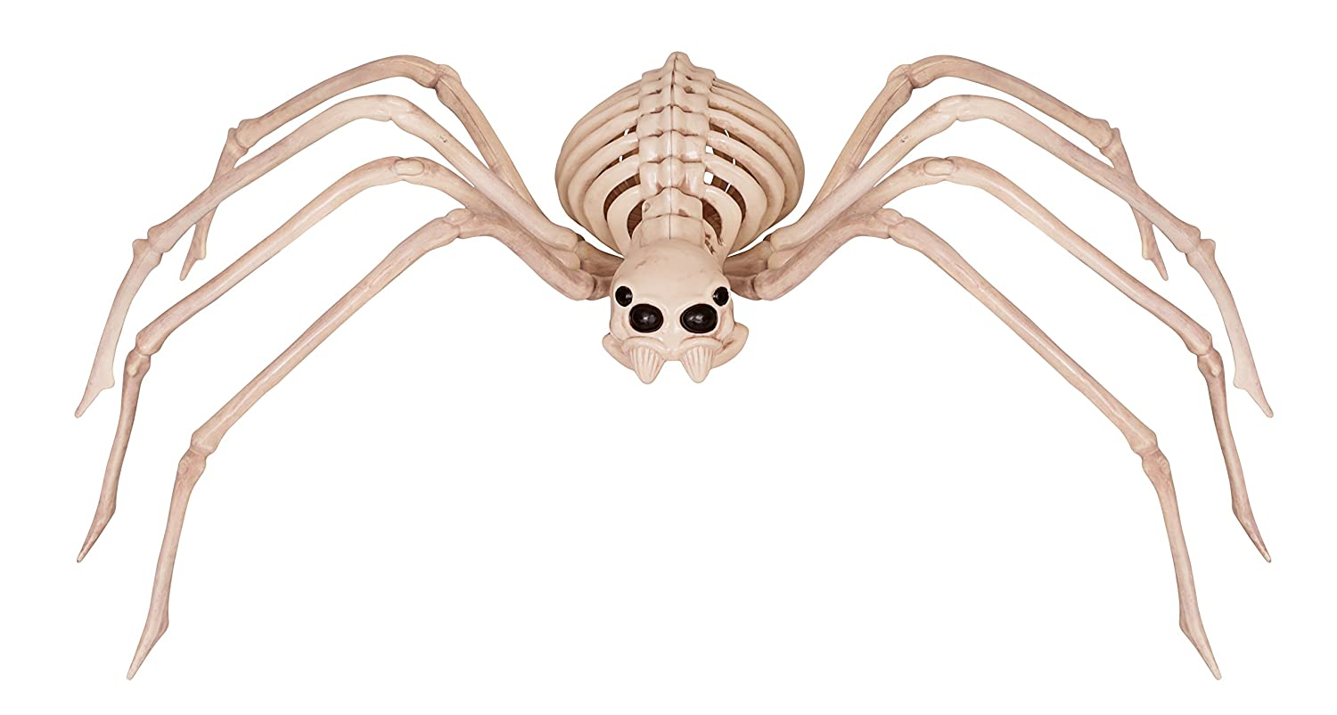 Amazon.com: Crazy Bonez Skeleton Spider: Toys & Games