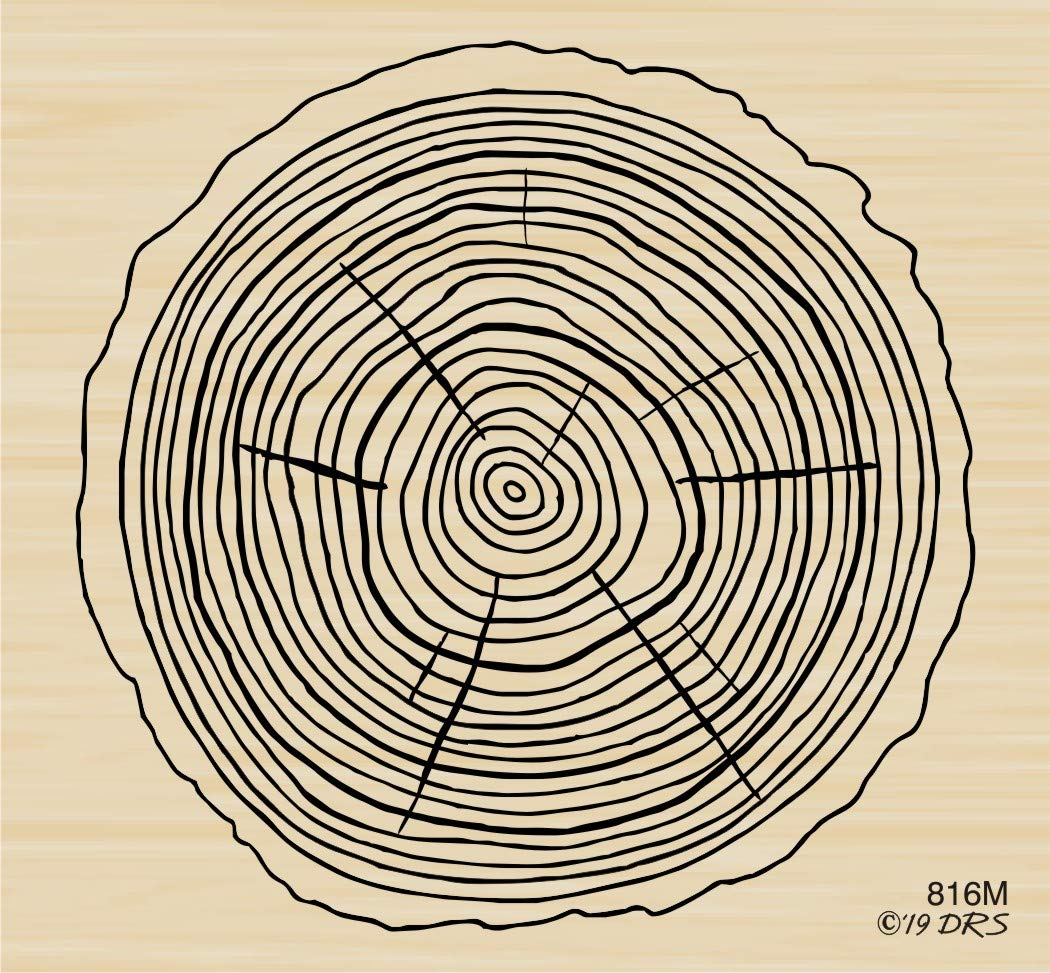 Tree Slice Woodgrain Rubber Stamp by DRS Designs Rubber Stamps