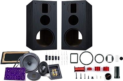 HiVi - DIY 9.9A - 9.9 Bookshelf Speakers - Near-Field Speakers - DIY  Speaker Kit - Pair - Black