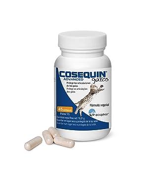 COSEQUIN SE506115 Cuidado Cadera y Articulaciones Canino Gatos 45Cap: Amazon.es: Productos para mascotas