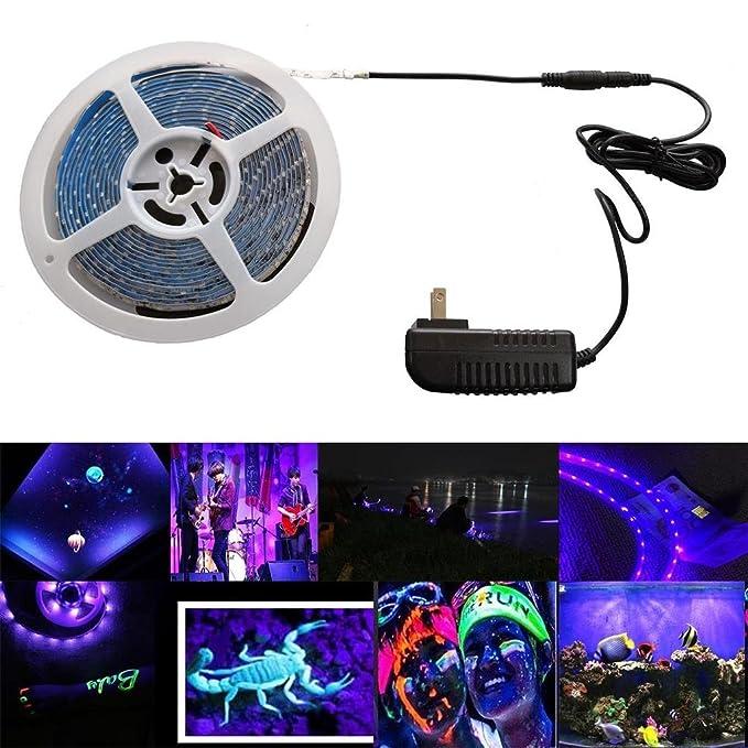 Review AMARS UV Black Lights