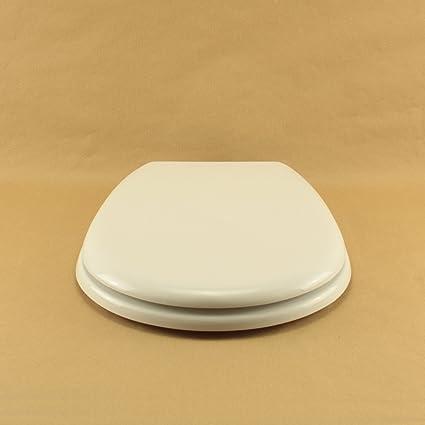 Sedile Wc Ideal Standard Liuto.Copriwater Ideal Standard Liuto Bianco I S Cerniera Cromo Sedile Asse Wc Amazon It Fai Da Te