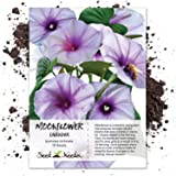 Seed Needs, Moonflower Seed Collection
