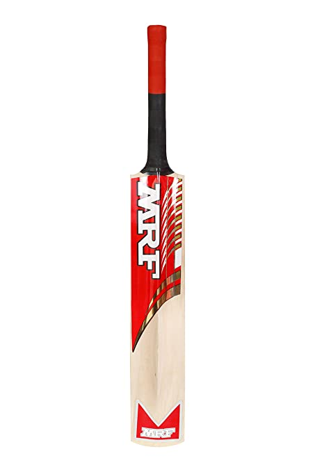 1a58cefea Image Unavailable. Image not available for. Colour  MRF Champion Kashmir  Willow Cricket Bat ...
