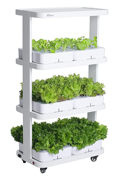 What Is A Hydroponic Gardening System Fasci Garden