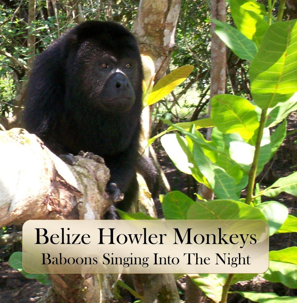 Belize Bruce's Howler Monkeys: Baboons Singing Into The Night