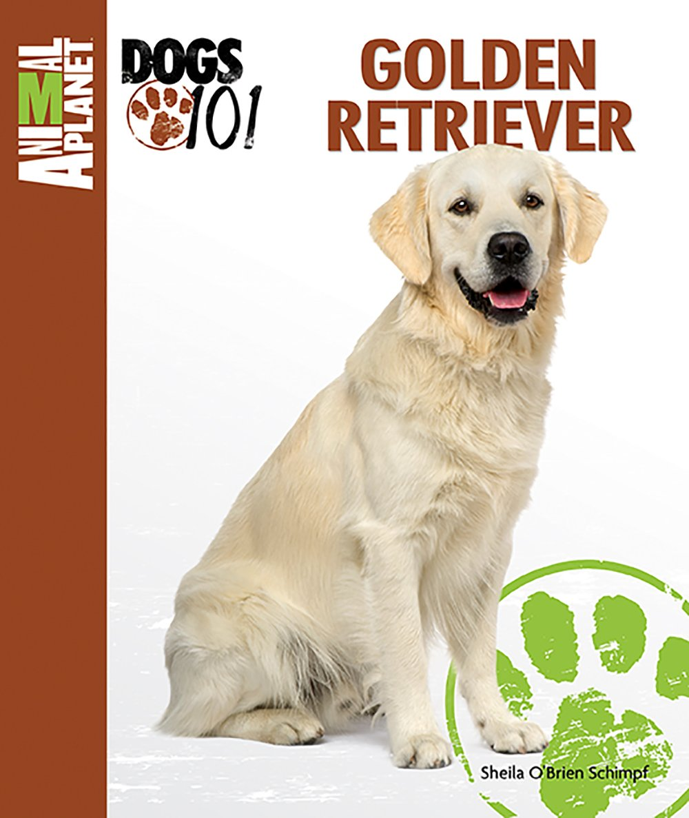Golden Retriever (Animal Planet Dogs 101): Sheila O'Brien Schimpf:  9780793837212: Amazon.com: Books