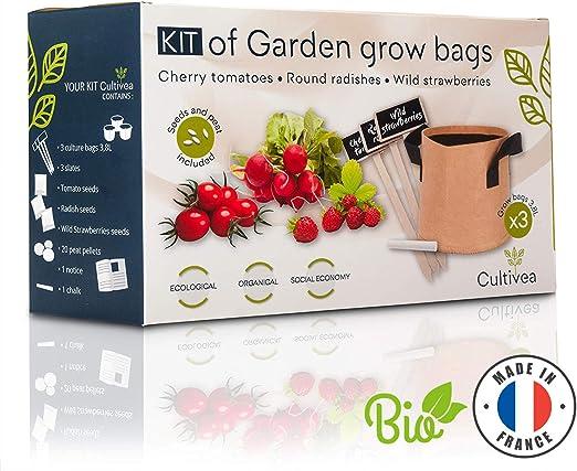 Cultivea Kit completo de hierbas - Cultive sus propias Frutas y ...