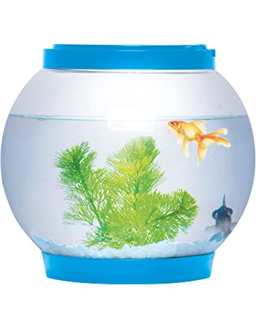 Pecera redonda de cristal, 5 litros, con iluminación LED, brillante, color azul