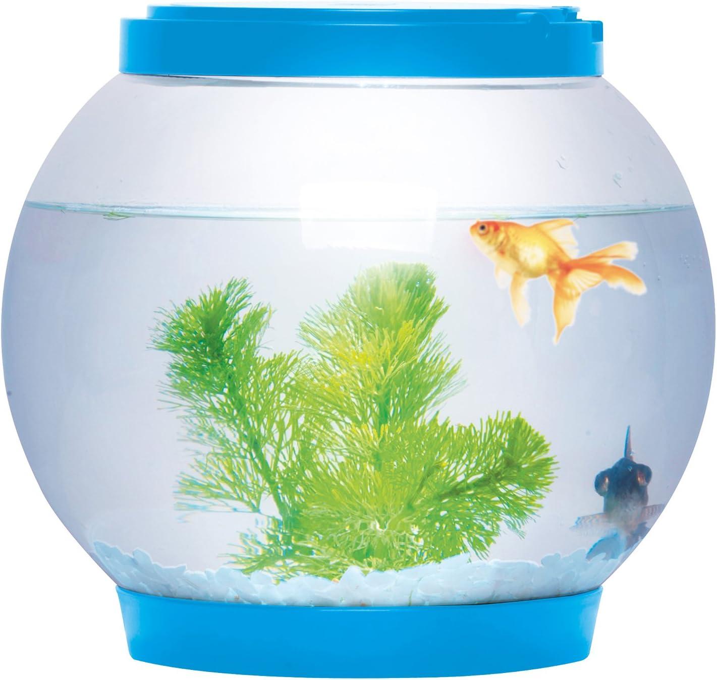 Sentik® Aquarium de bureau à LED, bocal rond de 5 litres lumineux bleu