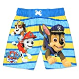 Paw Patrol Boy's Swim Trunks and Rash Guard Set