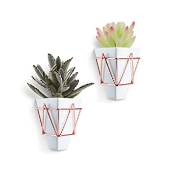 Blumentopf hängend Wand Vase Blumentopf deko - Love-KANKEI 2 in 1 ...