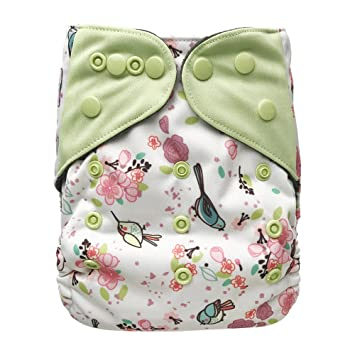 Baby Washable Ecological Diaper – with 2 Bamboo Inserts for Cloth Diapers (Garden)