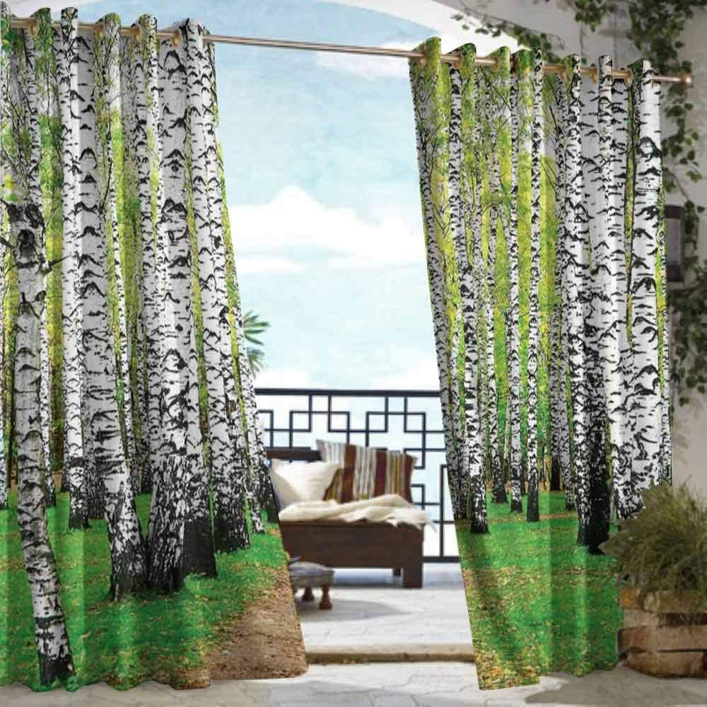 DILITECK Estor para Ventana Nature Majestic Waterfall Flowing by The Rocks and Old Bridge in Forest Artwork para Patio/Front Porch Hunter y Fern Green: Amazon.es: Jardín