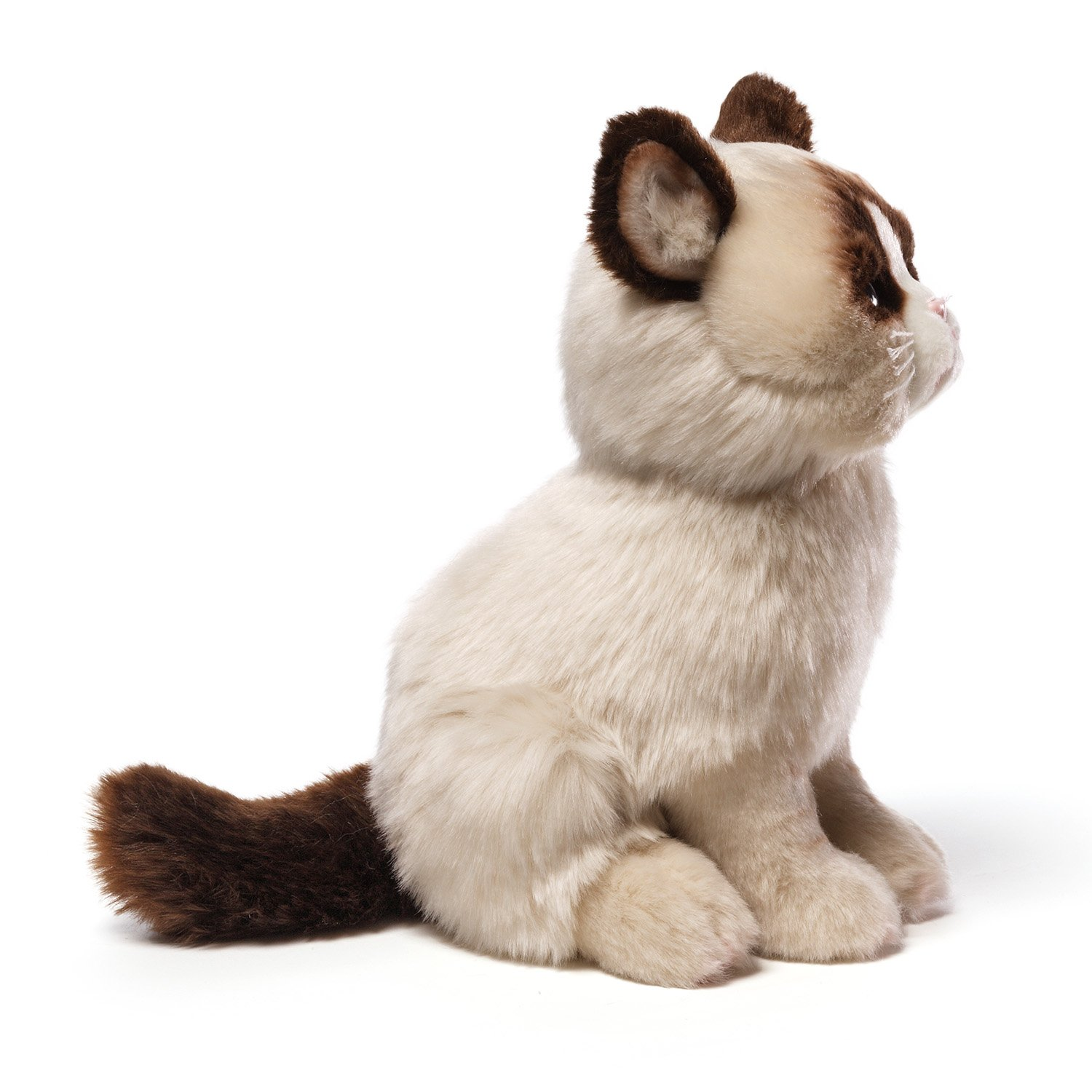 Amazoncom Gund Grumpy Cat Plush Stuffed Animal Toy Toy Toys - Meet the japanese cat that might just be the grumpiest kitty ever